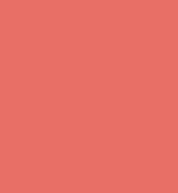 wpflunky.com logo